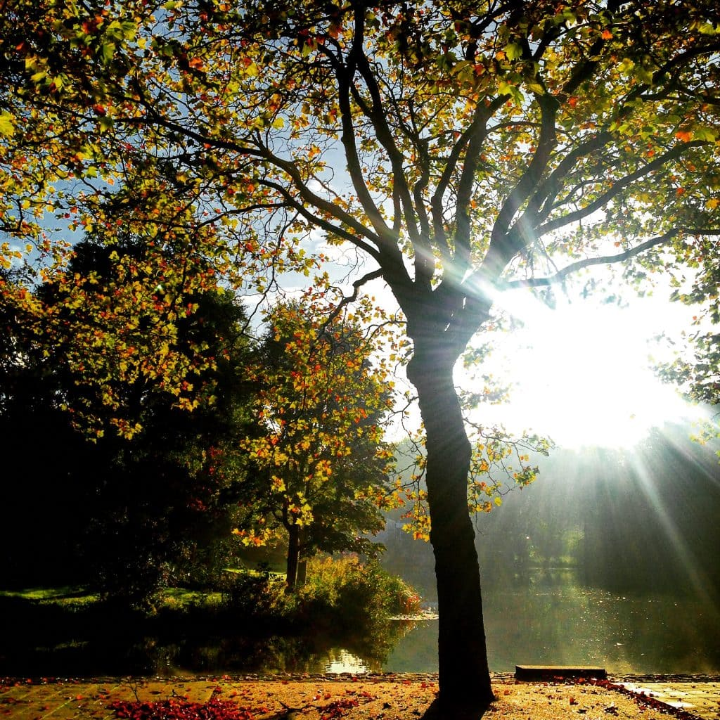 5 tips tegen een herfstdip!