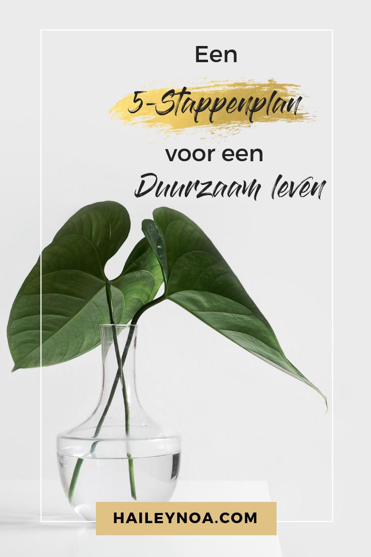 Een duurzaam leven in 5 stappenplan
