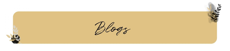 blogs haileynoa.com